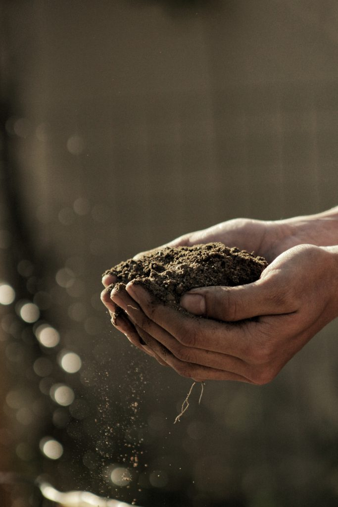Nuo to, kaip šiandien rūpinsimės dirvožemiu, priklauso, ar ateities kartoms pakaks maisto. Gabriel Jimenez nuotr. (Unsplash.com)